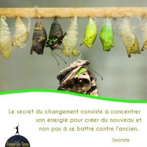 secret du changement